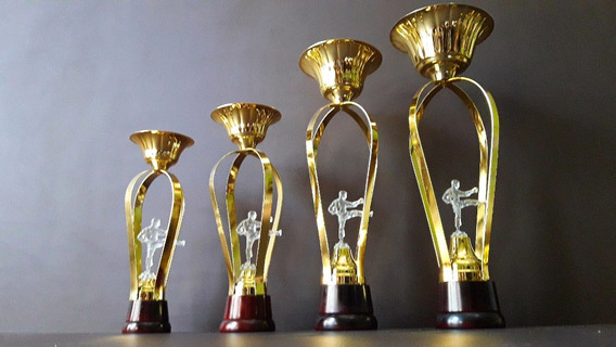 Trofeo Copa Metálico Karate Artes Marciales Transp Base Mad