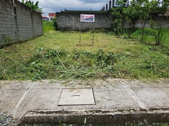 Lote En Urbanización Los Girasoles