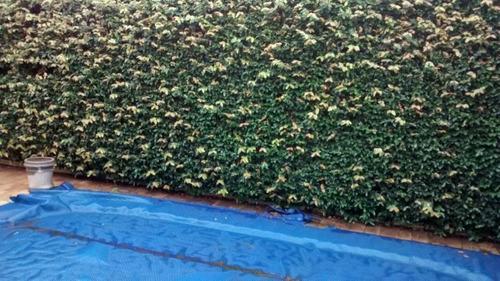 Casa Com 4 Quartos Para Comprar No Santa Lúcia Em Belo Horizonte/mg - 1410