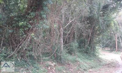 Terreno Para Venda Em Nova Friburgo, Campo Do Coelho - 137