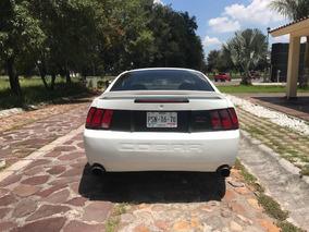 Ford Mustang Cobra Svt Cobra Svt Mustang