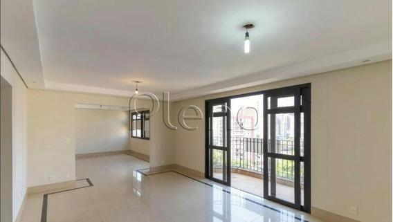 Apartamento Para Aluguel Em Vila Itapura - Ap015943