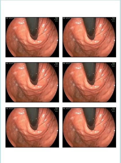 Captura De Imagem Mais Software Para Cadastro De Pacientes.