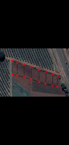 Chácaras De 600m² A 3 Km De Engenheiro Coelho Sp