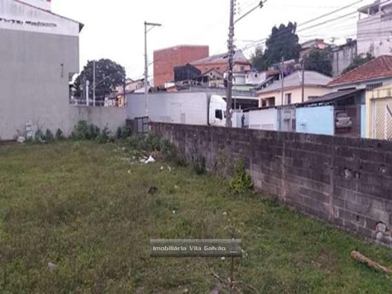 Terreno Para Construção De Galpão. - 4849-1