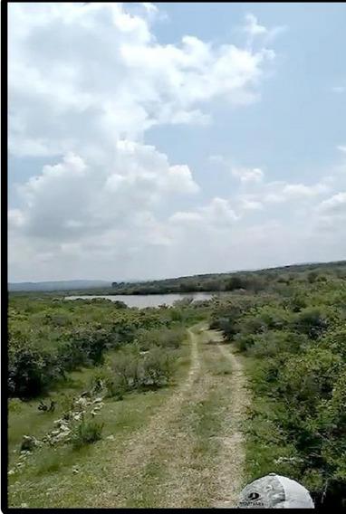 Rancho De 130 Hectarias En San Julian