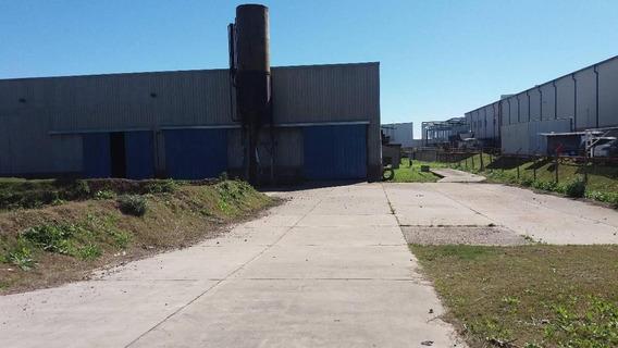 Deposito Industrial Con Puente Grua 2.500 M2