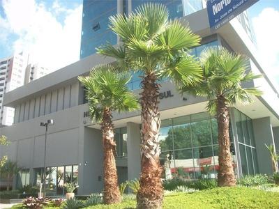 Sala Comercial Para Venda E Locação, Cambuí, Campinas. - Sa0101