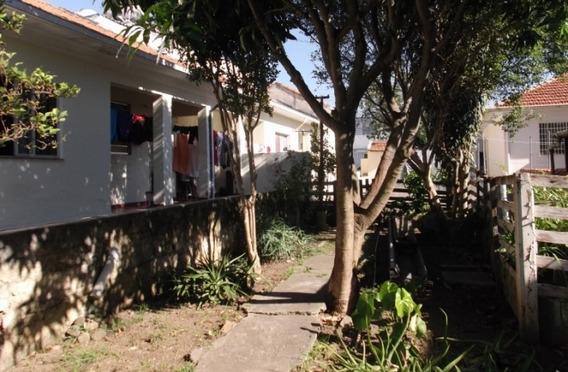 Excelente Terreno Para Investidores - Vila São Jose Scs - 34