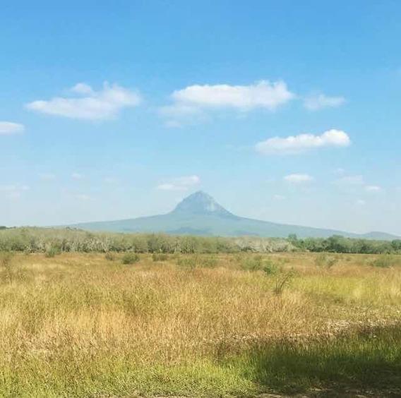 Rancho En Venta, Mpio. Gonzalez Tamaulipas.