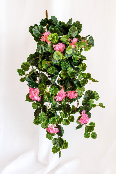 Geranio Colgante, Follajes Y Plantas Artificiales