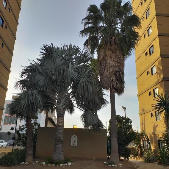Apartamento En Venta Coro Sector Bobare