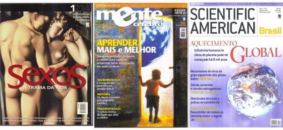 Lote 3 Revistas De Ciência - Mente Cérebro Sexos Scientific