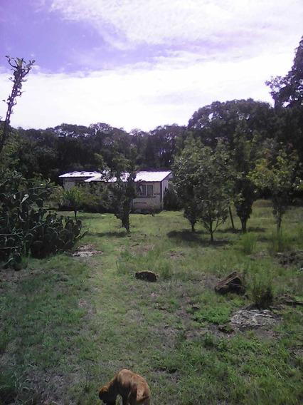 Terreno Boscoso En Jilotepec Con Viviendas Y Agropecuarias
