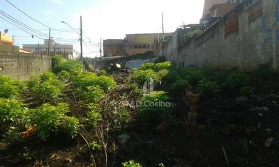 Terreno Residencial À Venda, Cidade Parque Alvorada, Guarulhos. - Te0038