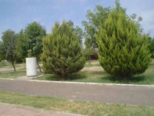 Imagen 1 de 3 de Terreno En Venta En Los Fresnos