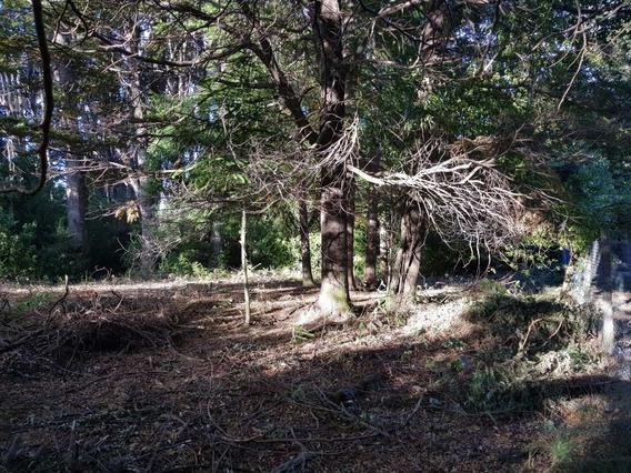 Lote En Venta - Villa Campanario, Bariloche - Id 12306
