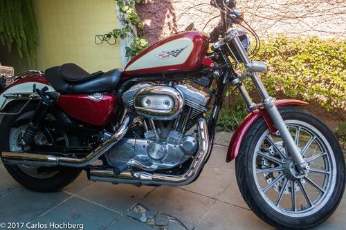 Harley-davidson Sportster 2006 Xl883 Carburada!