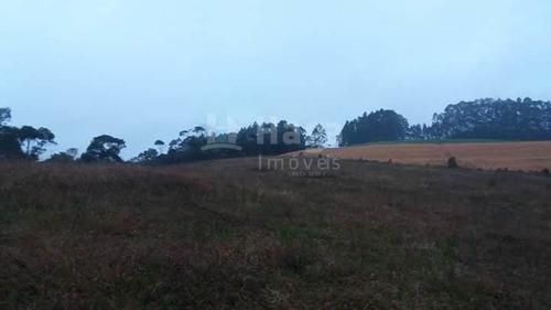 Terreno Rural Para Sítio À Venda Em Vidal Ramos/sc - 1454