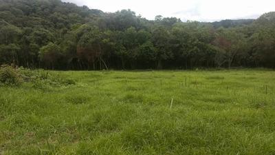 J Lançamento Com Terrenos Planos De 1000mtrs Em Ibiuna