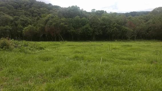L.s Qualidade E Economia Terrenos Em Ibiuna