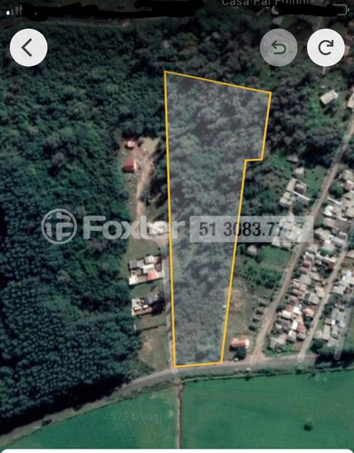 Imagem 1 de 5 de Terreno, 30204.67 M², Lageado - 207412