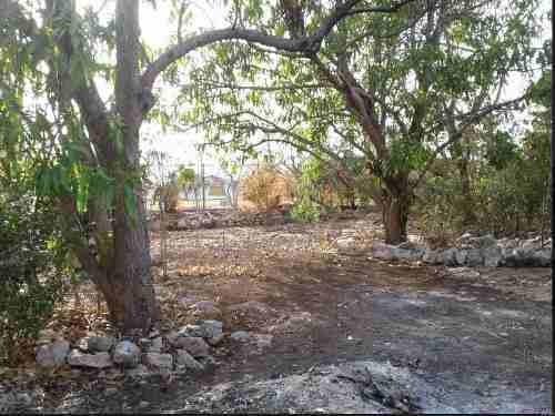 Se Vende Terreno Con Construcion Ideal Para Departamentos U Oficinas Por La Macroplaza En Mérida, Yucatán