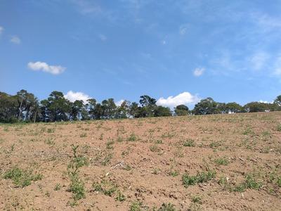 Terrenos De 1000 E 600 M2 Em Ibiuna Proximo Aos Comércios J