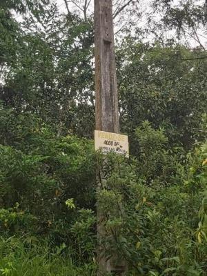 Terreno De Chácara No Litoral, Com 4000 M², Em Itanhaém/sp