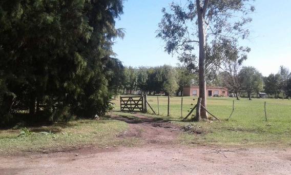 Fracciones De Lotes Terreno Zona Quintas, Abasto La Plata.