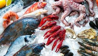 Se Vende Productos Del Mar (pescados Y Mariscos)