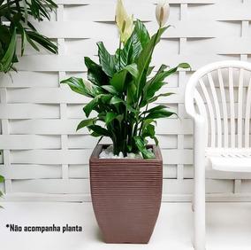 1 Vaso D Presente Copo Caneca Carteira Personalizada T 45x35