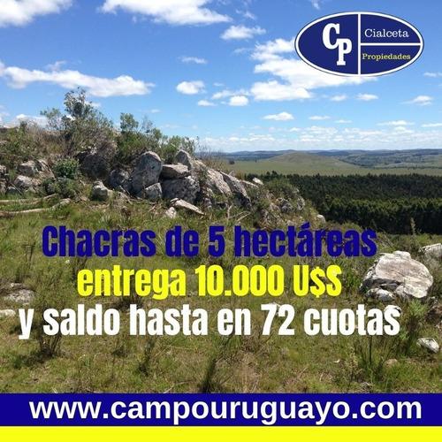 5 Hectáreas, Entrega 10.000 U$s Y Saldo Hasta En 72 Cuotas