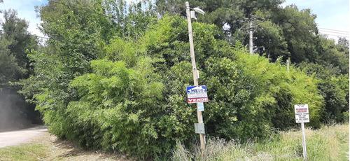 Terreno En Luján Entrada Bº Casuarinas