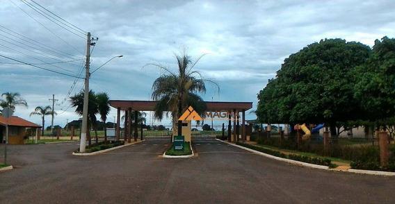 Terreno Residencial À Venda, Centro, Cravinhos. - Te0694