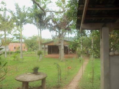 Chácara Residencial À Venda, Encruzilhada, Biguaçu. - Ch0029