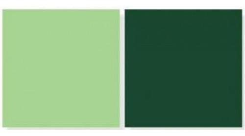 Imagem 1 de 2 de Repeteco - Linha Duo Verde Claro/v.escuro - Hortelã