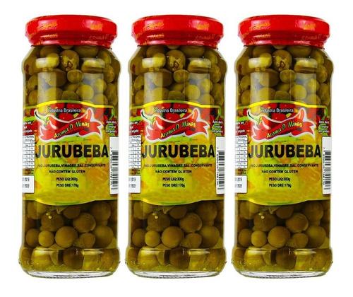 Imagem 1 de 4 de Kit C/ 3 Unid Jurubeba Em Conserva 300g - Pronta Entrega