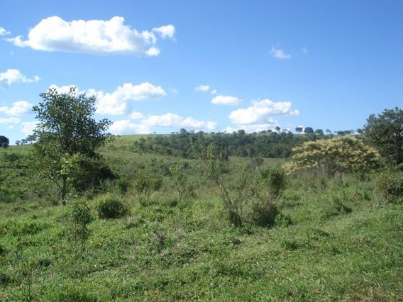 Fazenda Para Comprar No Centro Em Matozinhos/mg - Ci1377