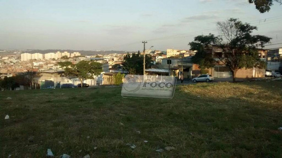 Terreno Residencial À Venda, Parque Flamengo, Guarulhos. - Te0002