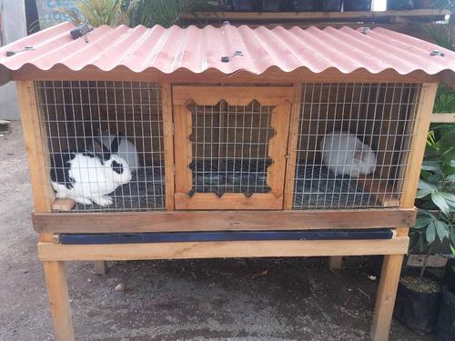 Jaula Casa De Conejo Ideal, Protección Frío ,lluvia