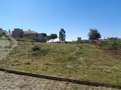 Terreno - Centro - Ref: 219133 - V-219133
