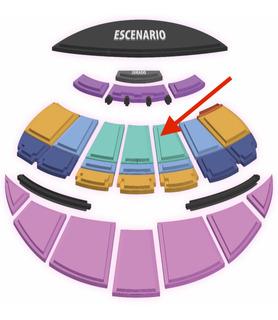 Entrada Festival Viña 2020 Ricky Martin-platea Preferencial