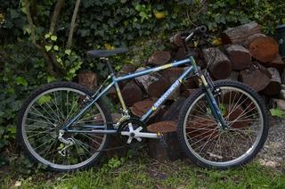 Bicicleta Mountain Bike Bianchi Wolf Rodado 24 - 15 Velocida