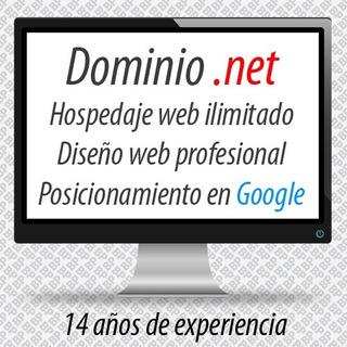 Dominio .net + Hospedaje Web + Diseño + Posicionamiento Web