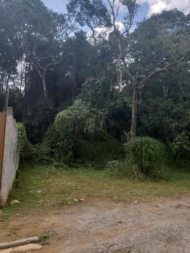 Imagem 1 de 1 de Terreno Para Venda Em Itapecerica Da Serra, Embu Mirim - 680_2-1160518