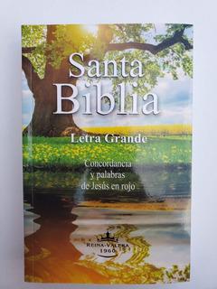 Biblia Letra Grande Económica Rvr1960 Concorcordancia Pjr