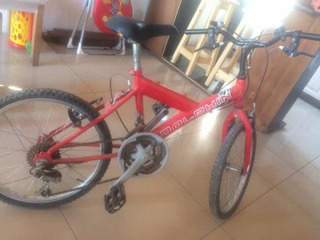 Bicicleta Niño Dolphin