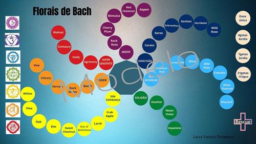 Mesa Radiônica Floral De Bach