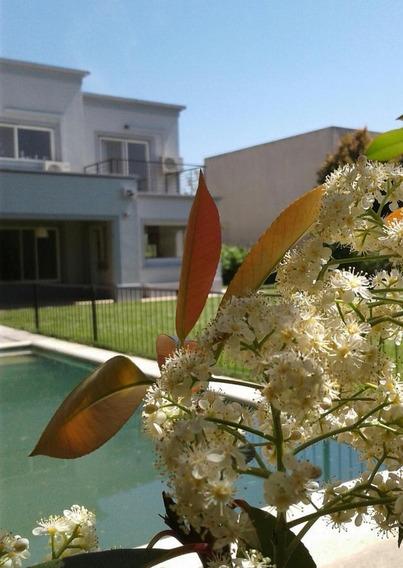 Venta Con Renta De Casa En Los Sauces De 4 Doms Dependencia Y Pileta